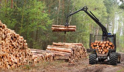 Machinerie Forestière