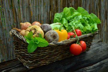 Même si l'arrivée de la période chaude s'est fait attendre cette année, les producteurs agroalimentaires peuvent s'attendre à une saison semblable aux années précédentes.
